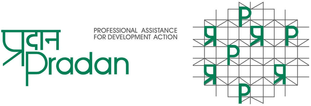 Professional Assistance for Development Action